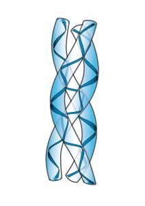 Co cellulit ma wspólnego z kolagenem??