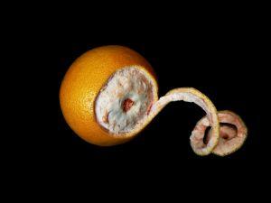Grejpfrut - owoc nie tylko na cellulit